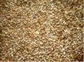 Wheat, 3 Grade 2