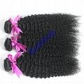 Human hair Virgin Hair Brazilian Peruvian Indian Malaysian Curly body loose Wave 4