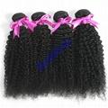 Human hair Virgin Hair Brazilian Peruvian Indian Malaysian Curly body loose Wave