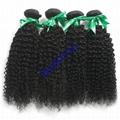 Human hair Virgin Hair Brazilian Peruvian Indian Malaysian Curly body loose Wave 8