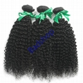 Human hair Virgin Hair Brazilian Peruvian Indian Malaysian Curly body loose Wave