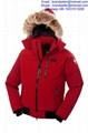 Canada Goose parka winter coats men's down jackets wholesale best quality 1
