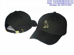 wholesale drake OVO caps snapback hats sport cap fashion hat