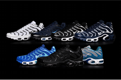 best quality Nike air max TN sport shoes