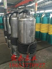 厂用排污潜水泵BQS10-289-2.2 排污排沙专用泵