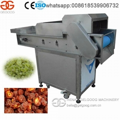 High Quality Stainless Steel Preserved Fruit Dicing Machine with High Capacity