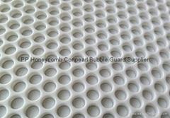 2 layer PP Bubble Board