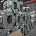 316L不鏽鋼板、卷 醫療用品專用不鏽鋼材料 4