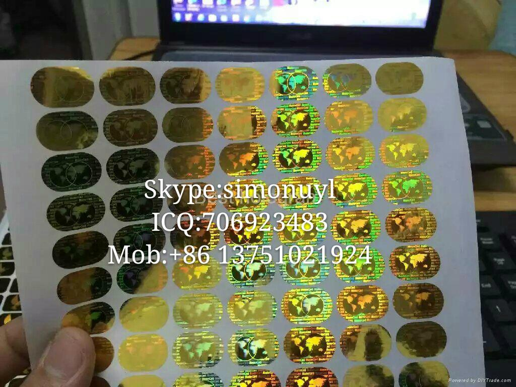 Silver and gold globe holography sticker mastercard sticker for saler hologram