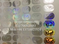 Silver and gold globe holography sticker mastercard sticker for saler hologram