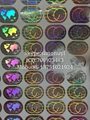 3D silver and gold globe hologram sticker for mastercard 19*13 mm