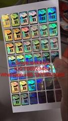 AMEX high quality anti-fake hologram sticker 3D effect