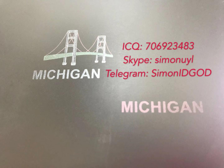 New Michigan Hologram overlay MI OVI hologram laminate sheet Michigan TEMPLATE 2