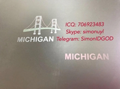 New Michigan Hologram overlay MI OVI hologram laminate sheet Michigan TEMPLATE