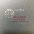 GA ID OVI laminate hologram GEORGIA OVI laminate GA DL hologram GA Template 3