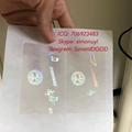 Tennessee TN ID DL hologram overlay sticker Tennessee ID template 2