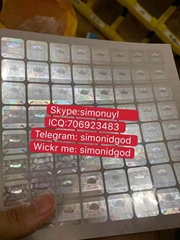 Canada Birtish Columbia State ID hologram sticker