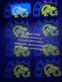 New  GA Georgia ID OVI hologram pouch with raise text UV NEW GA Template  2