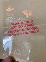 nSC New SC ID DL hologram overlay sticker nSouth Carolina ID template