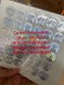 Georgia GA Driver Lice hologram sticker GA back Kingram with words 4