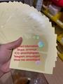 Texas TX ID DL hologram overlay sticker Texas TX ID template