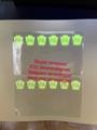 Pennsylvania PA ID UV hologram overlay sticer with UV Pennsylvania ID templatek
