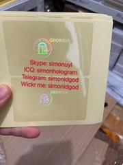 Georgia GA ID DL hologram overlay sticker Georgia ID template
