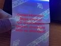 New Florida FL Card with UV FL ID card with GOLD ghost NO magnetic strip