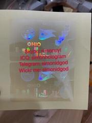 Ohio OH ID hologram sticker stick driver license hologram