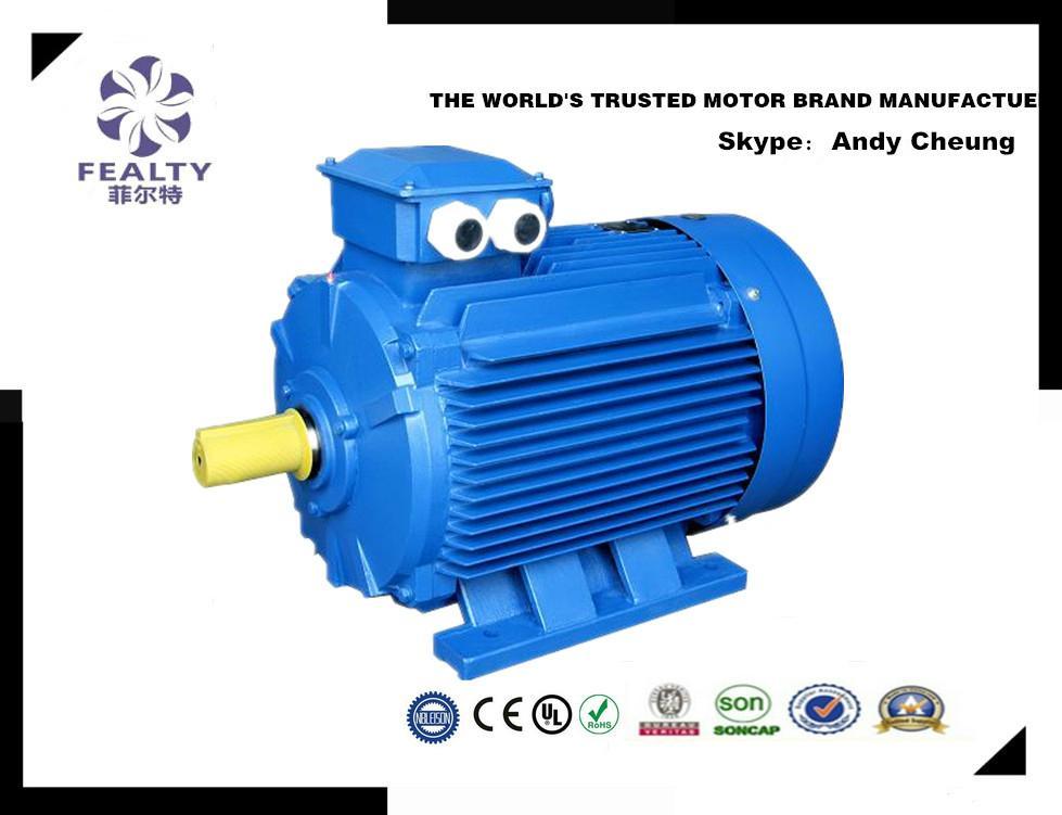 ANP series three phase induction motor 2
