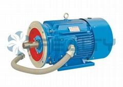 YK2 high-low pressure series motor