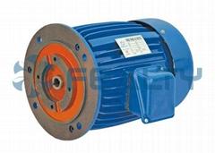 YTY series oil pumps motors