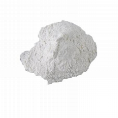 Adenosine cyclophosphate 60-92-4