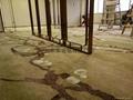 酒店大堂专用地毯 4