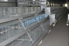 阶梯式自动上料机鸡笼专用行车上料机设备