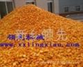 柑橘前处理生产线