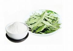 Stevioside Herbal extrac