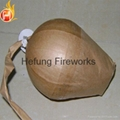 CE Certificated 4 inches Red Iron Tree