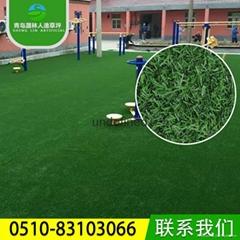 晟林厂家直销户外绿化人造草坪 SL001