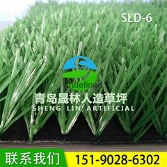 人造草坪足球场晟林供应SLD-6