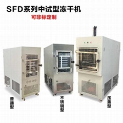 中型真空冷凍乾燥機 中試凍干機