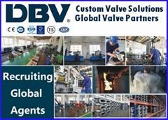 DBV VALVE GROUP CO.,LTD