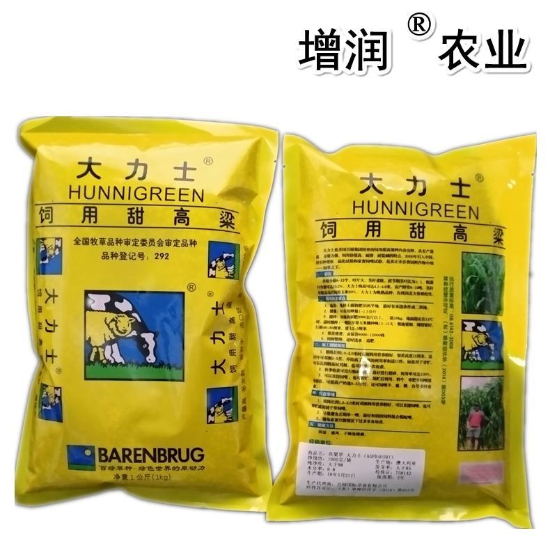 甜高粱種子包郵 甜高粱牧草種子養殖草種 2