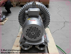 leaf vacuum air exhuast high pressure pump blowers