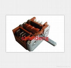 Rotary switch,electric switch