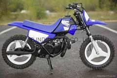 Kids New 50cc Dirt Bike