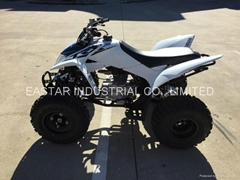 2016 New TRX 250X ATV