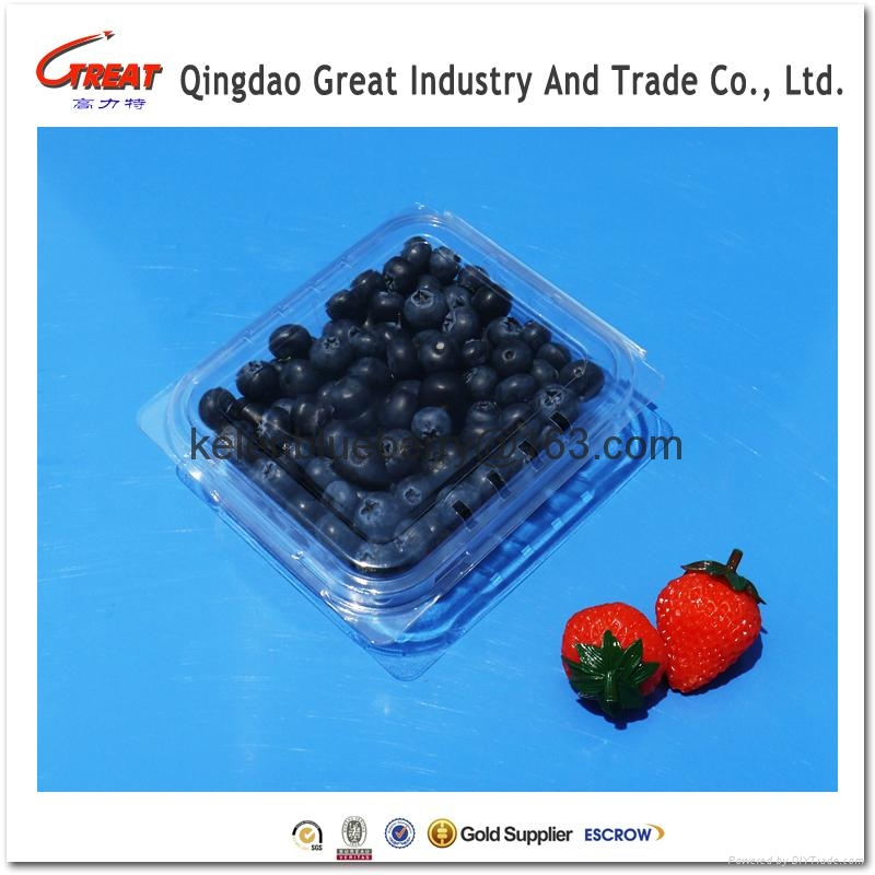 plastic blueberry clamshell packaging 1