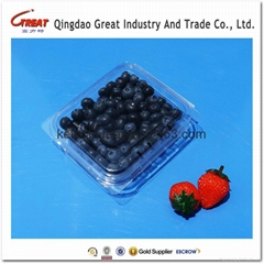 plastic blueberry clamshell packaging