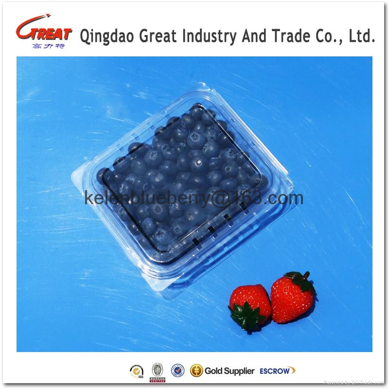 plastic blueberry clamshell packaging 3